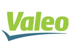SUBFAMILIA VALEO  Valeo