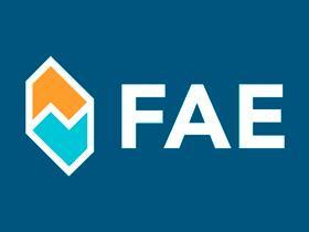 FAE FA74181 -