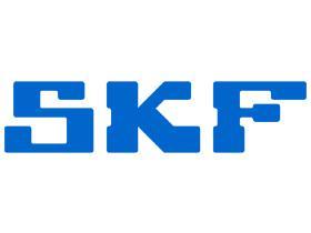 SUBFAMILIA SKF  SKF